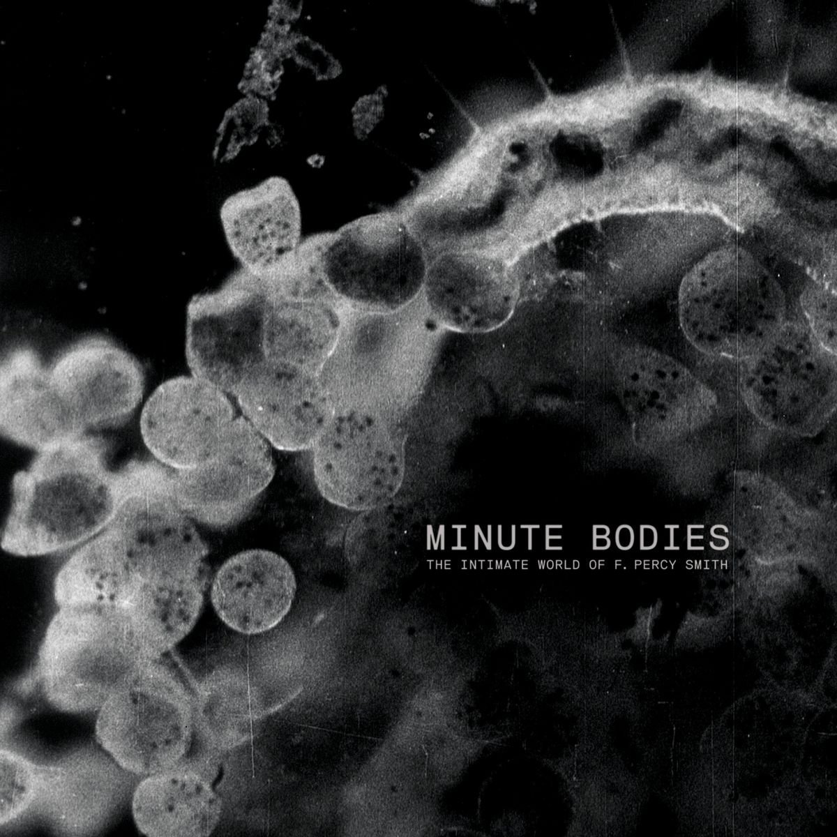 Minute Bodies : The Intimate World Of F. Percy Smith OST