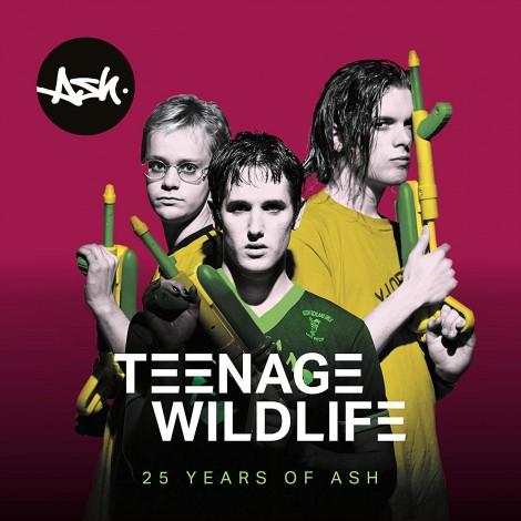 Ash - Teenage Wildlife : 25 Years Of Ash