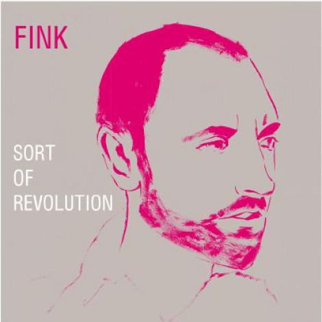 Fink - Sort Of Revolution