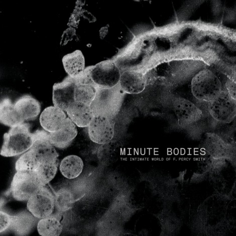 Tindersticks - Minute Bodies : The Intimate World Of F. Percy Smith OST