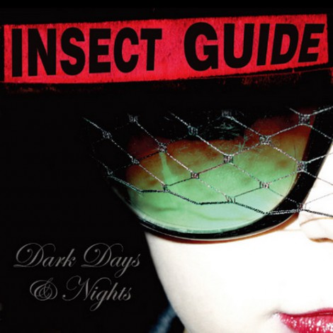 Insect Guide - Dark Days And Nights