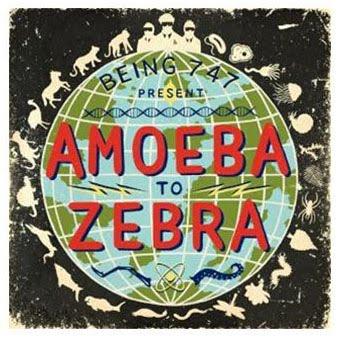 Amoeba To Zebra
