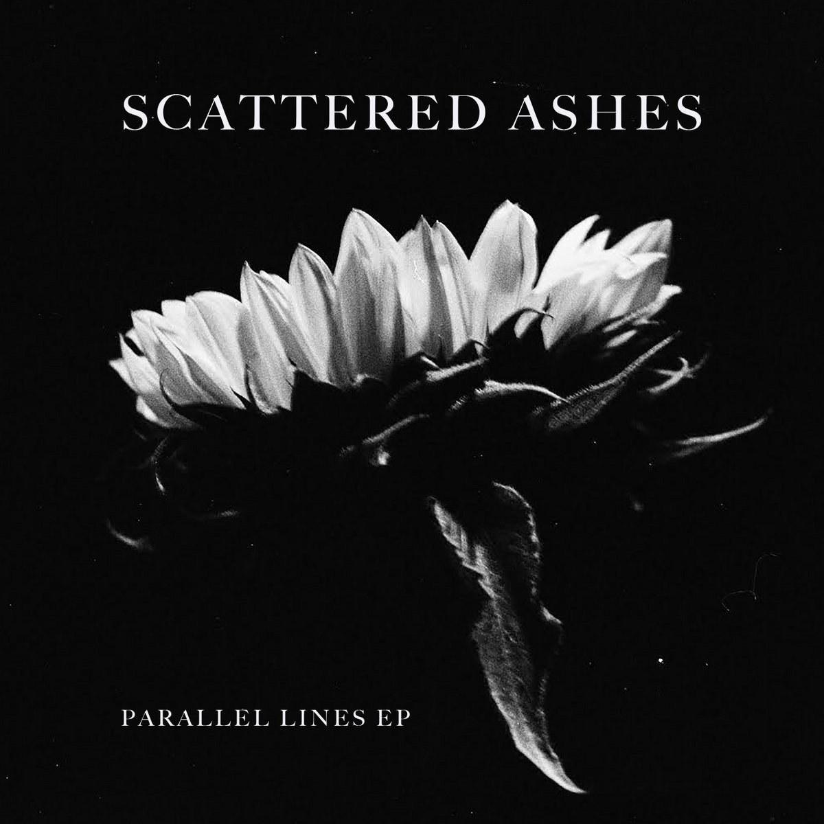 Scattered Ashes - Parallel Lines EP
